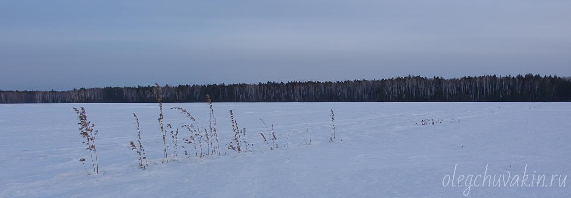 Снег, поле, Россия, Вудхауз, Wodehouse