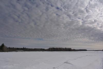 Поле, снег, март, ферма, небо, фото, Олег Чувакин