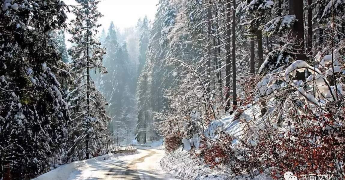 Два дня до Нового года, Новый год, дорога, снег, фото