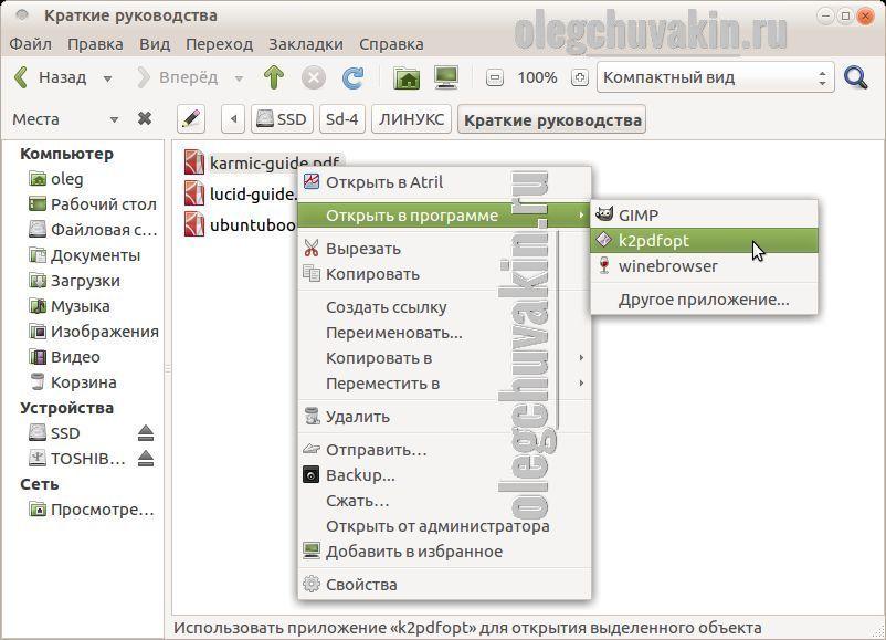 k2pdfopt, открытие файла pdf, контекстное меню, преобразование, Ubuntu
