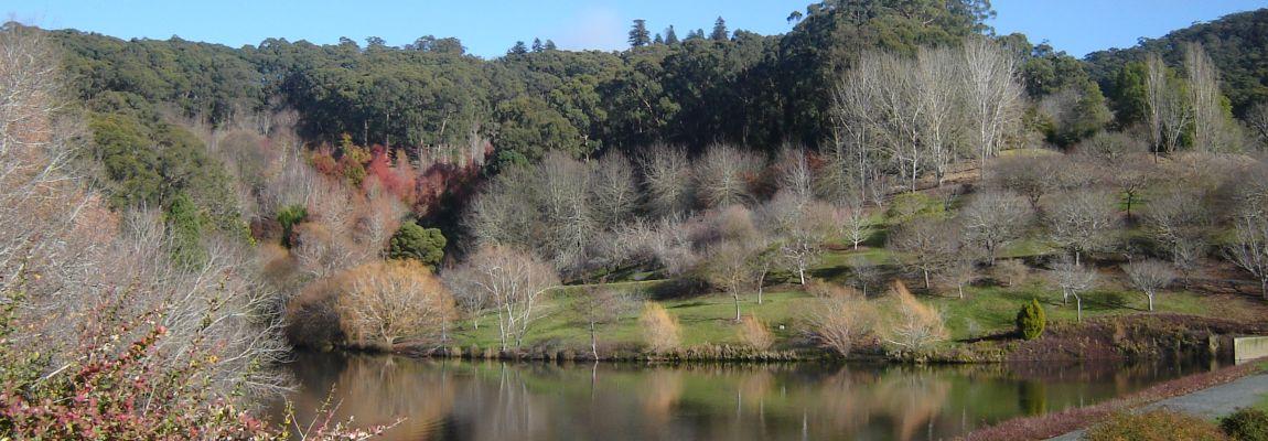 Австралия, Маунт Лофти, сады, Аделаидские холмы, штат Южная Австралия