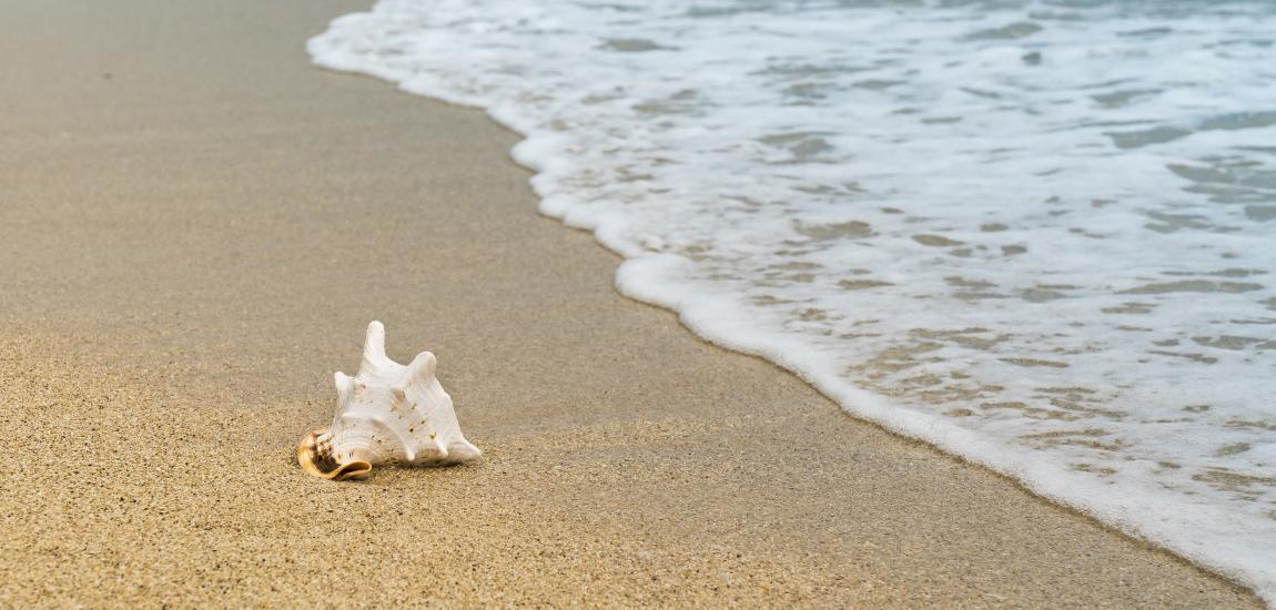 Шумовое загрязнение, уменьшить, жизнь без шума, тишина, покой, море, радоваться жизни