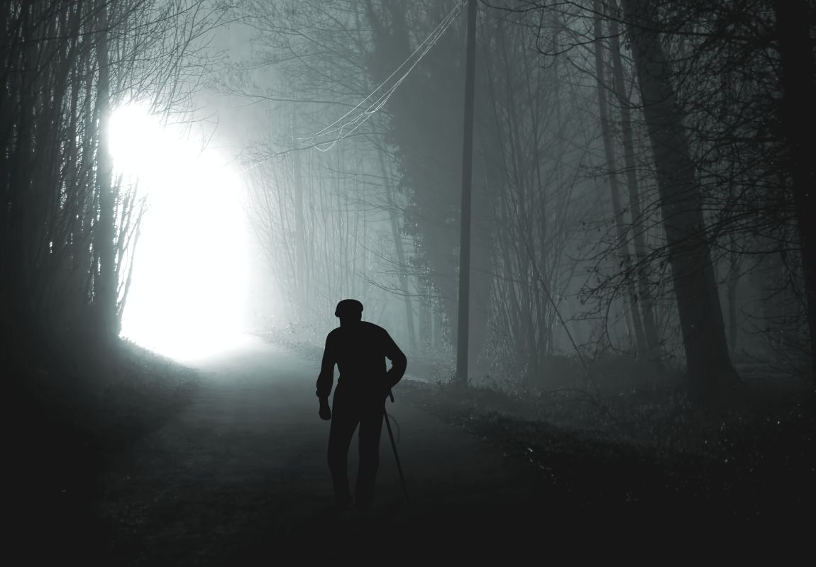 Путь президента, президент в лесу, с палкой, поиск счастья, светлое будущее