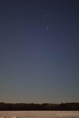Звёздное небо, март, Пояс Ориона, поле, лес