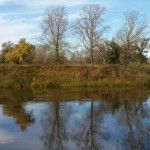 Река Тобол, фото, Олег Чувакин