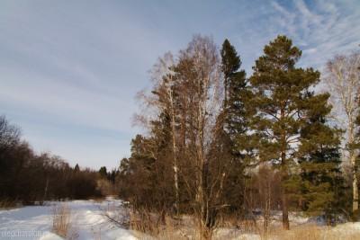 Пейзаж, март, деревья, снег, небо, солнце, фото
