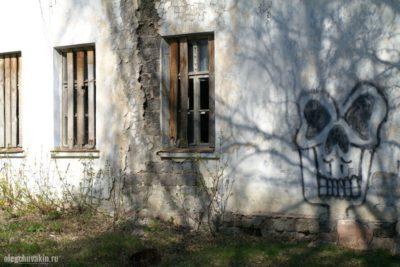 Вымирание русской деревни, развалины, катастрофа, Путин, XXI век