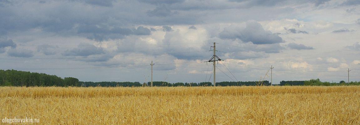 Русское поле, фото, Олег Чувакин, фантастический рассказ Организм