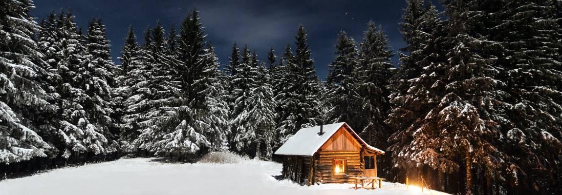 Ёлки, домик, деревня, фото