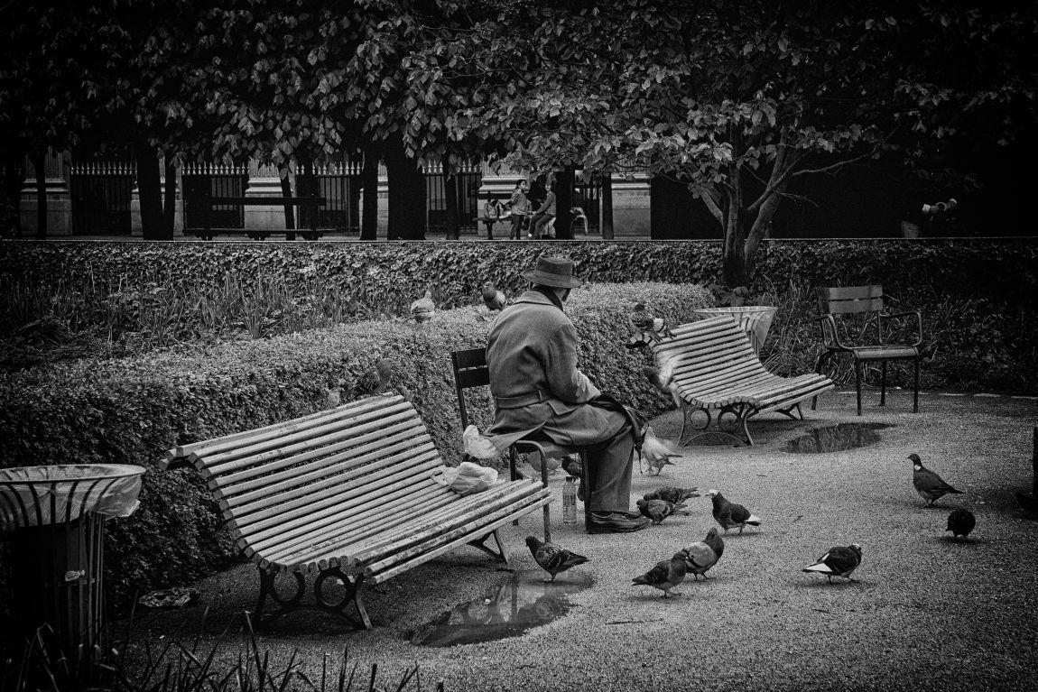 Старый человек, Париж, Ольга Карпова, победительница, конкурс История любви, 2018, отзыв