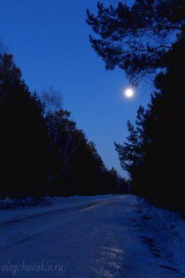 Луна, дорога, ночь, деревья