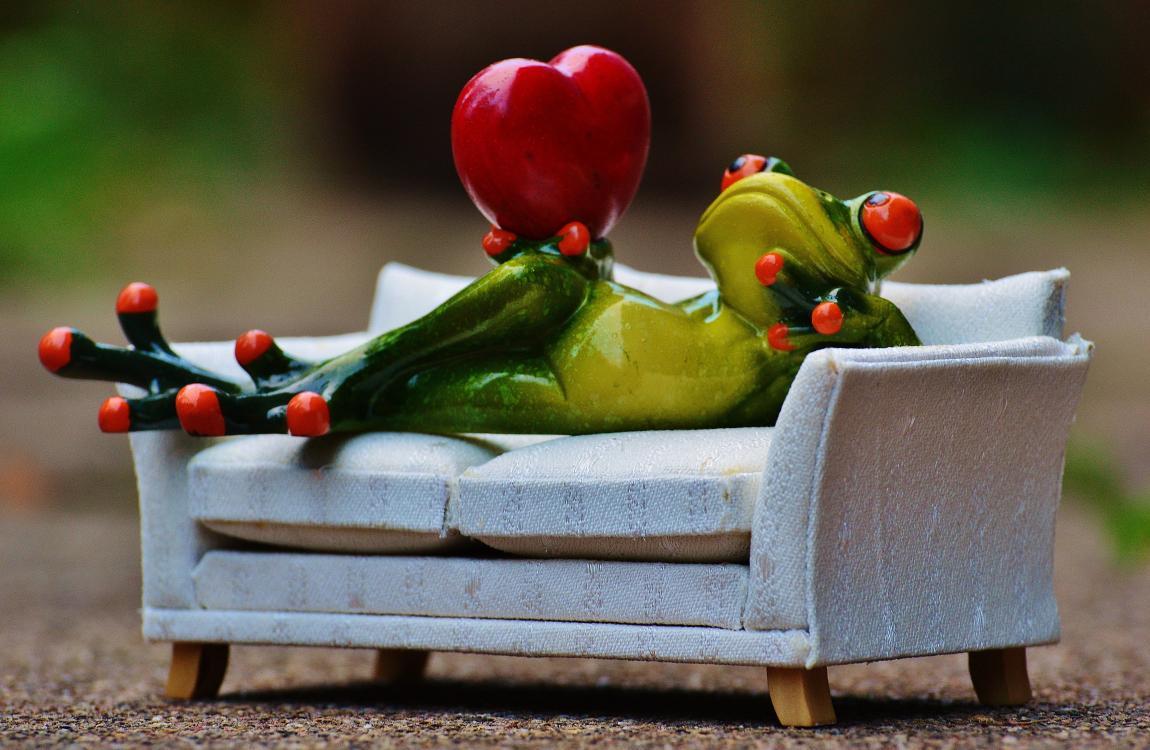 Диван, лягушка, сердце, любовь, фантастика, сказка