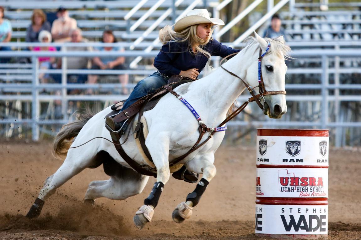 Родео, соревнование, состязание, конкурс, лошадь, жокей