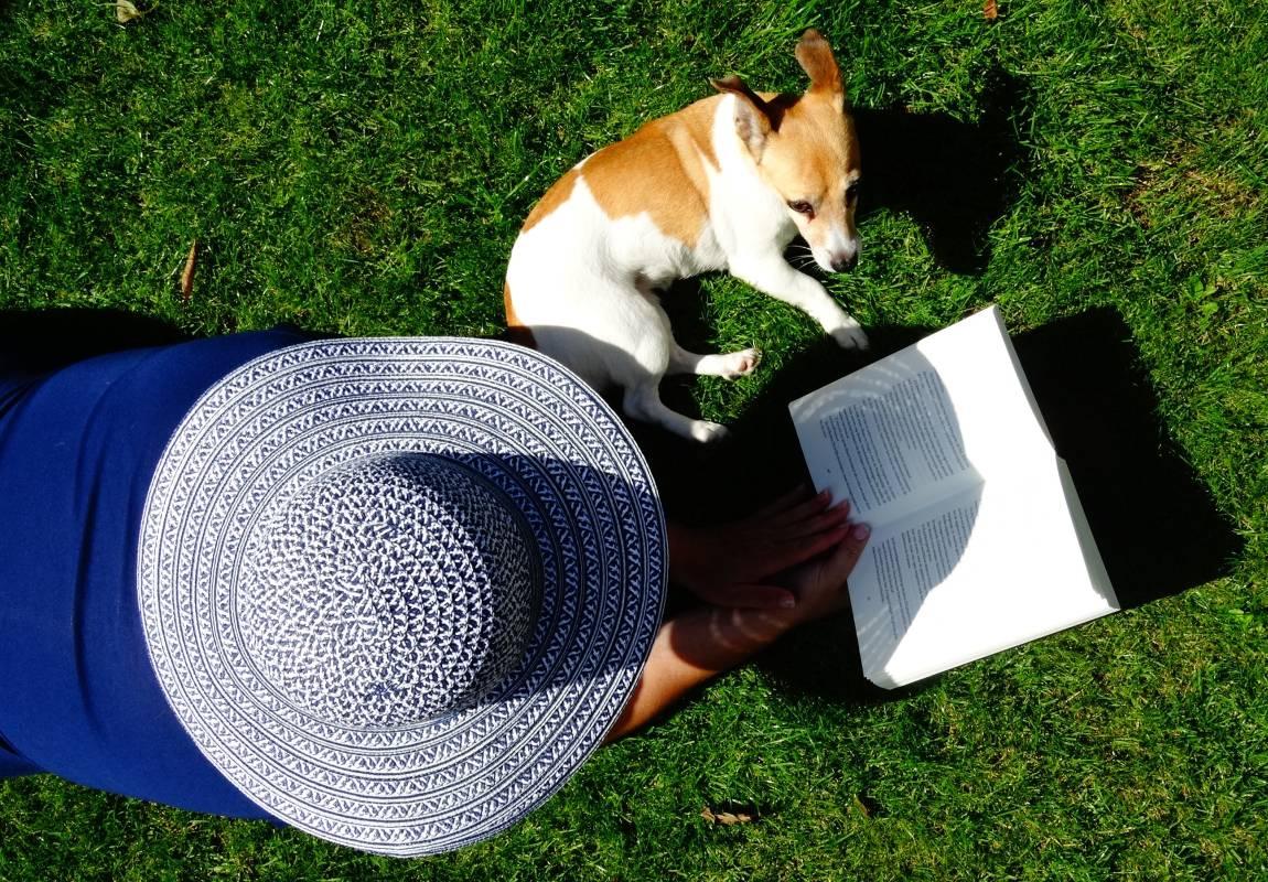 Женщина, в шляпе, собака, джек-рассел-терьер, книга, лужайка