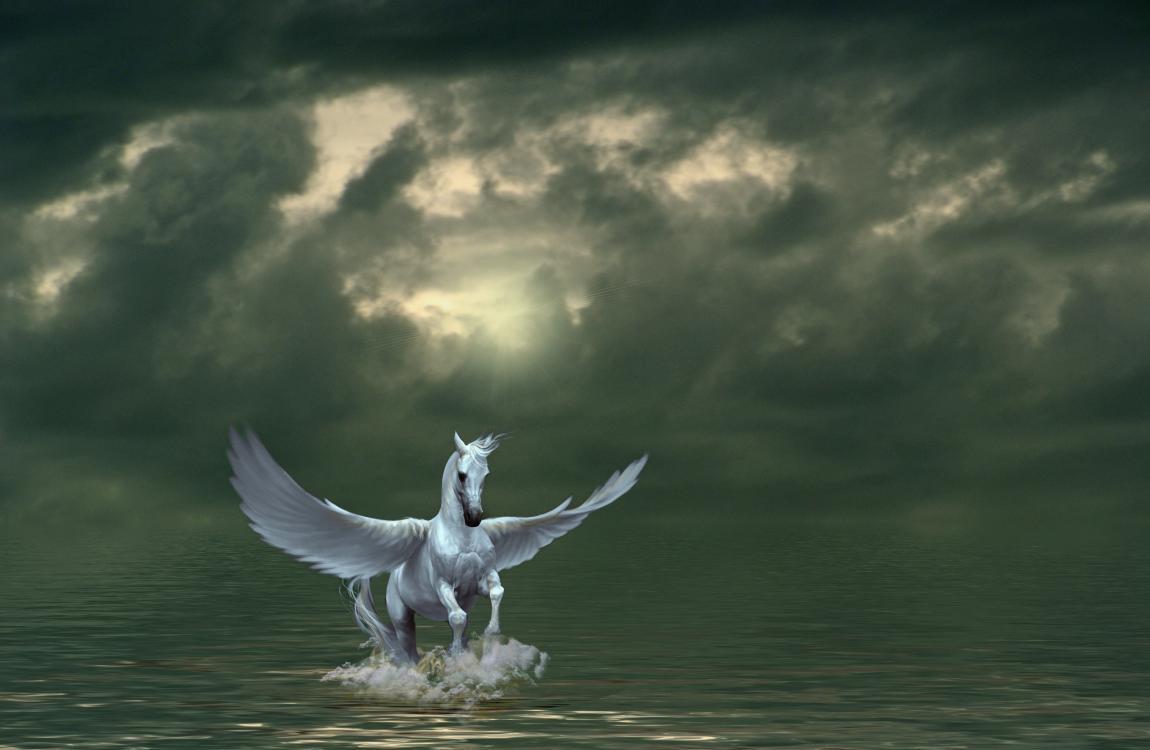 Конь Пегас, крылья, полёт, море, небо