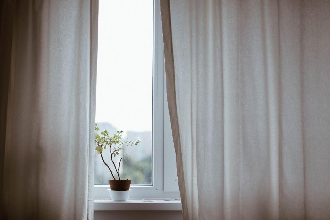 Шторы, окно, цветок, 23 этаж