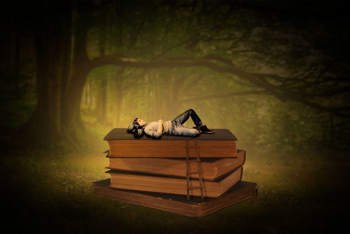 Писатель, книги, читатель