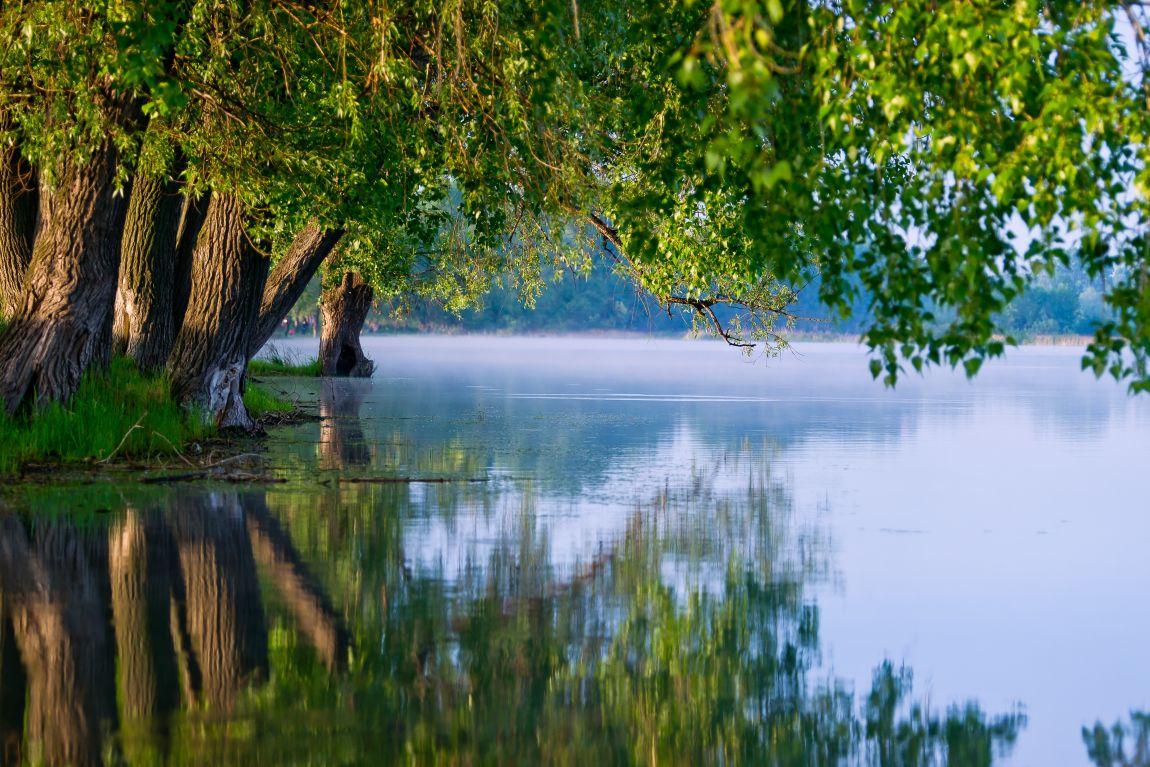 Вода, река, лето